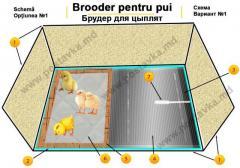 Брудер для цыплят, комплектующие для обогрева!